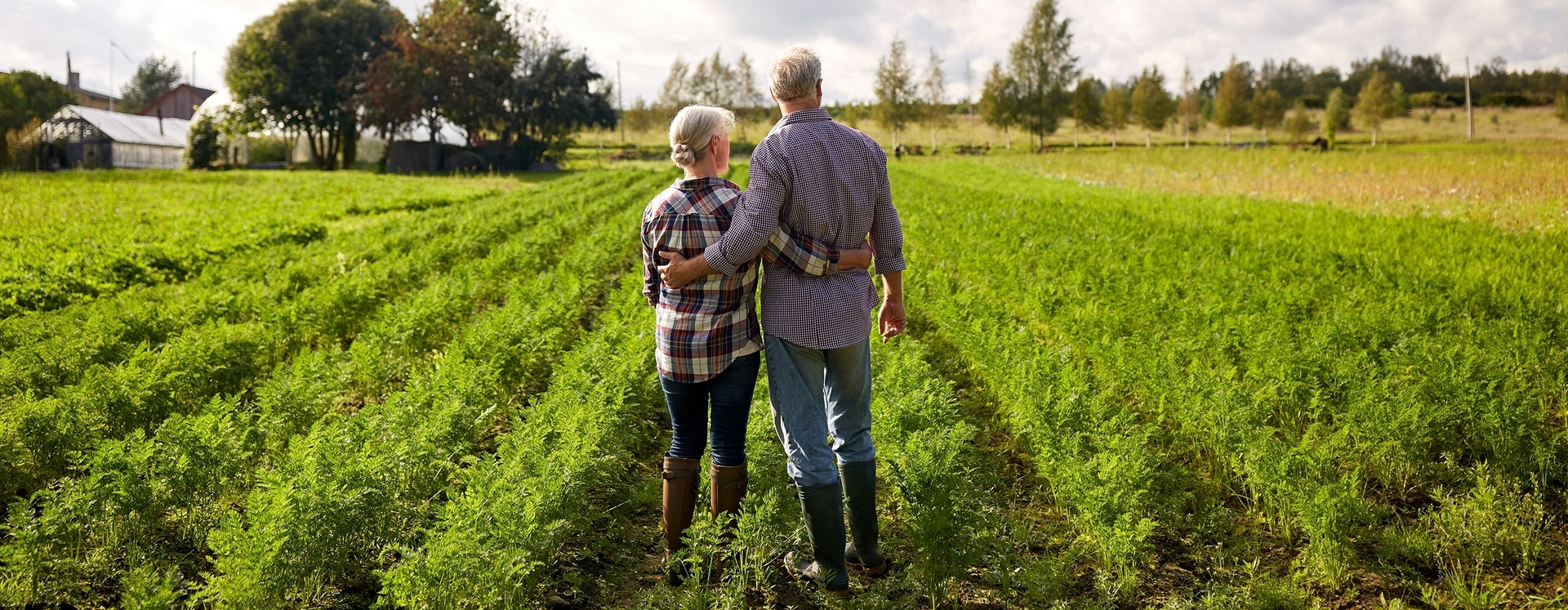 Ehepaar betrachten ein Feld